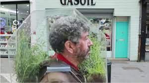 «Портативный оазис» вместо маски надевает использует бельгийский художник