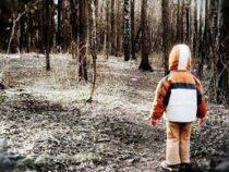 Трехлетний мальчик провел три дня в лесу и выжил