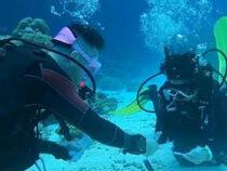 Чтобы сделать девушке предложение, романтик опустился с ней на дно океана