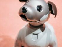 В Китае создали робота-собаку