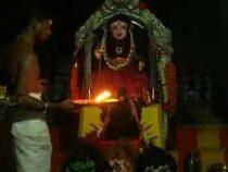 В Индии начали поклоняться богине коронавируса