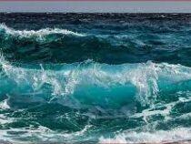 ЮНЕСКО предупреждает, что океаны рискует потерять способность поглощать углекислый газ