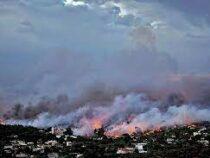 Афины заволокло дымом отбушующих природных пожаров