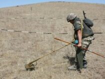 В приграничных районах Баткенской области работают саперы