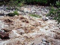 Проливные дожди спровоцировали сход селей в Джалал-Абадской области
