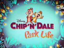 В соцсетях раскритиковали новую заставку к мультсериалу про Чипа и Дейла