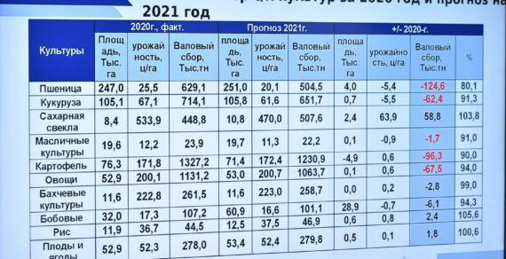 В Кыргызстане вводится запрет на экспорт некоторых сельхозтоваров