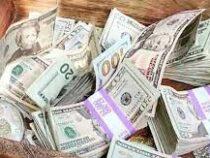 В США друзья закопали $10 тысяч и запустили в Сети поиск сокровищ