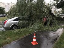 МЧС предупреждает жителей Чуйской области о сильном ветре