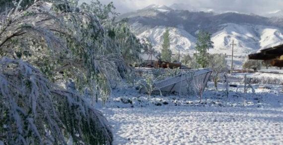 На села Чон-Алайского района обрушился снегопад