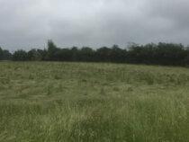 Очевидец утверждает, что причиной круга на поле стал таинственный купол света