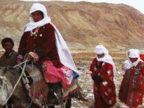 Кыргызстан просит у ООН помощь в эвакуации афганских кыргызов из Таджикистана