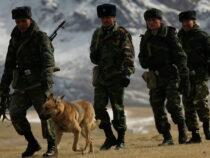 Таджикистанские пограничники задержали кыргызского военнослужащего
