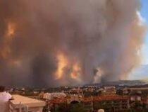 Сильный пожар в Анталье не обошелся без жертв