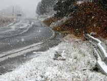 ВБразилии выпал снег