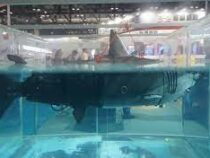 В Китае создали дрона-акулу