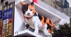 В Токио появилась огромная трехмерная кошка
