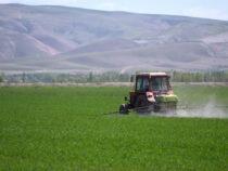 Ряд импортируемых кормовых продуктов освобождены от НДС
