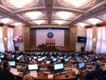 Парламент снял сповестки дня законопроект «Окабинете министров»