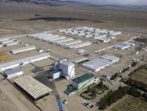 В Балыкчи полноценно заработала первая в Кыргызстане птицефабрика бройлерного направления