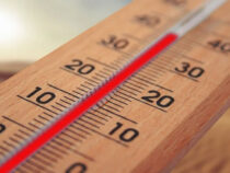 Аномальная жара в Кыргызстане сохранится до конца рабочей недели