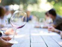 Производство вина во Франции в этом году может оказаться наихудшим с 1945 года