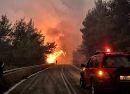 Сильный лесной пожар охватил греческий остров Родос