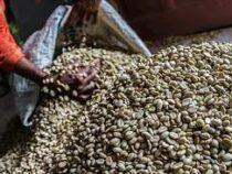 Ценам на кофе предсказали рекордный рост