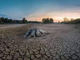 Ученые предупреждают о кардинальном изменении жизненно важных систем планеты