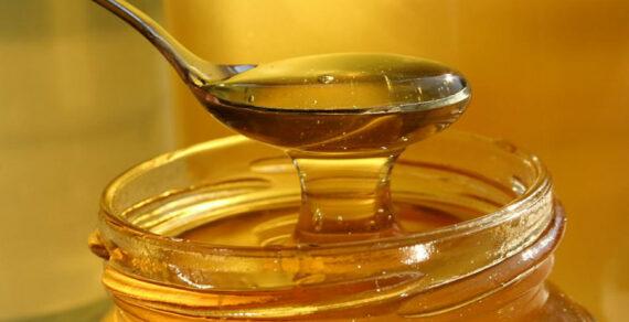 Кыргызстан увеличил экспорт меда на 43%