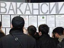 За год в Кыргызстане увеличилось количество безработных