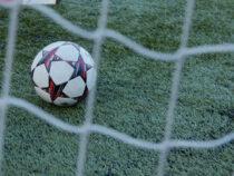 В Чили гол в футбольном матче забила собака