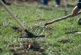 Кабмин присоединяется к экологической акции во Всемирный день чистоты
