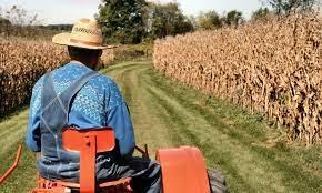 Свыше 10 тысяч льготных кредитов выдано фермерам с начала года
