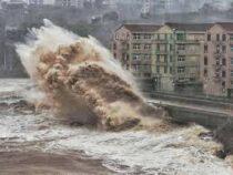 Число стихийных бедствий за последние 50 лет выросло в пять раз