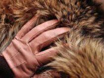 Бренды Gucci и Yves Saint Laurent отказались от натурального меха