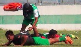 Пчелы атаковали футболистов во время матча в Боливии