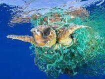 Мировой океан намерены очистить от пластика