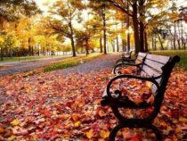 Синоптики рассказали о погоде в сентябре