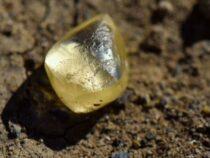 В США пара нашла крупный бриллиант